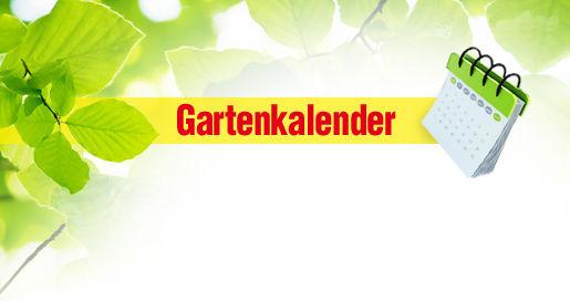 Gartenkalender Selbstde