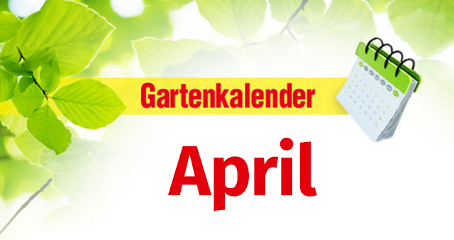 Gartenkalender April