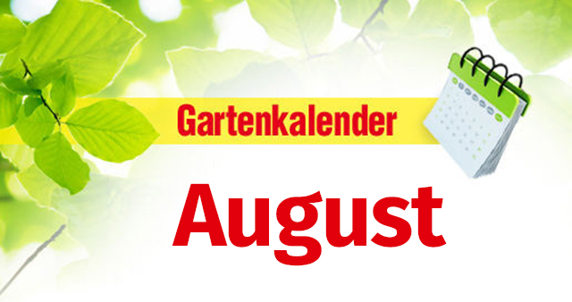 gartenkalender august. Black Bedroom Furniture Sets. Home Design Ideas
