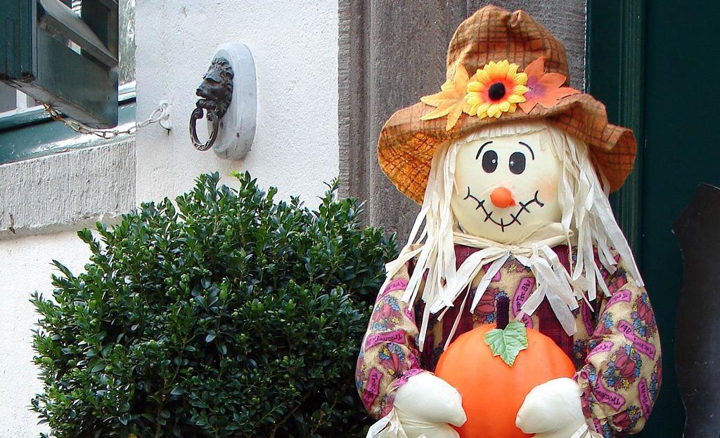 Halloween Deko Garten Selbst De