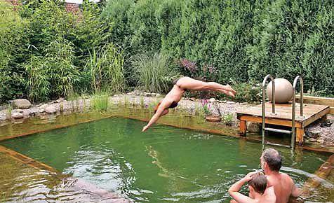 Schwimmteich selber bauen   selbst.de