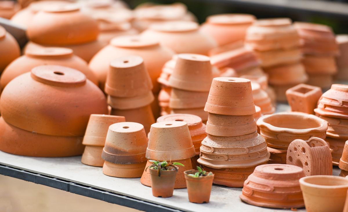 Terracotta-Töpfe im Teich reinigen?   selbst.de