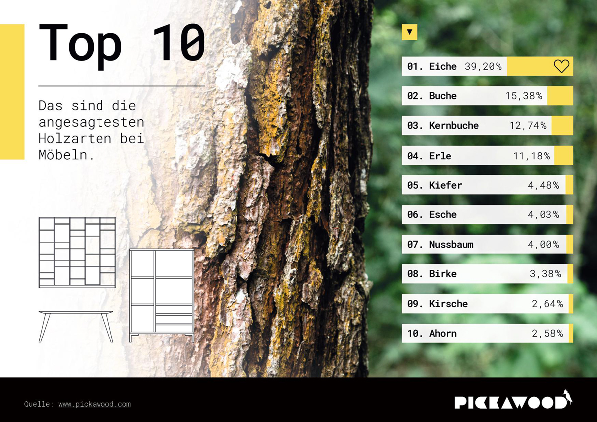 die 10 beliebtesten Holzarten