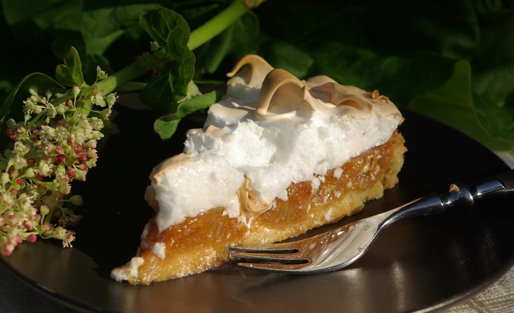 Rhabarber-Kuchenstück auf Teller mit Gabel