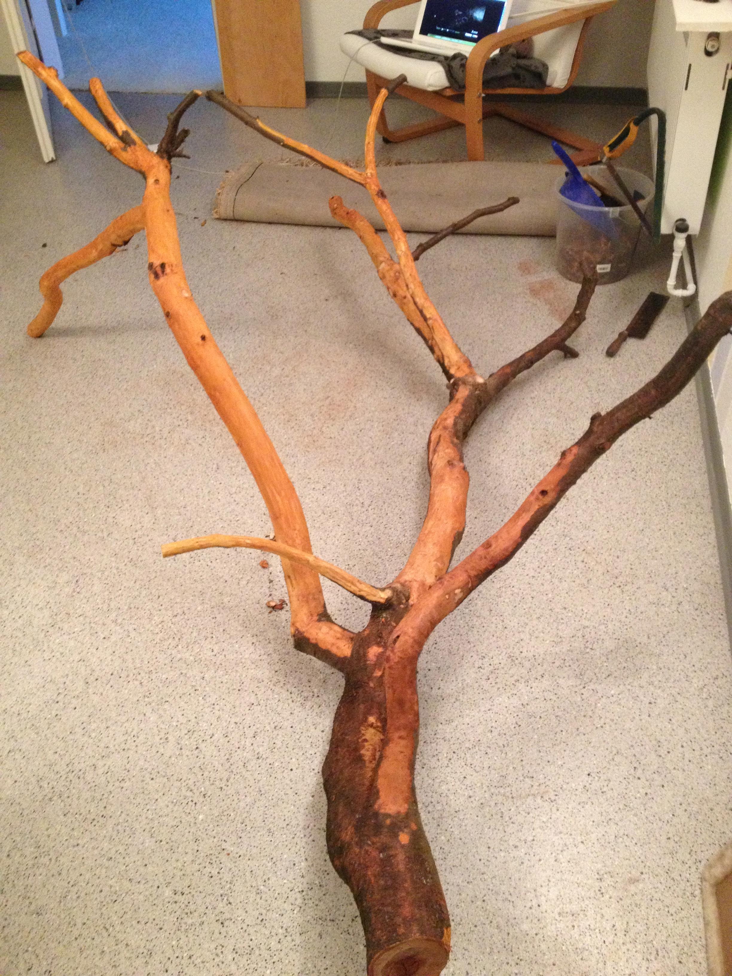 Naturkratzbaum Selbst De