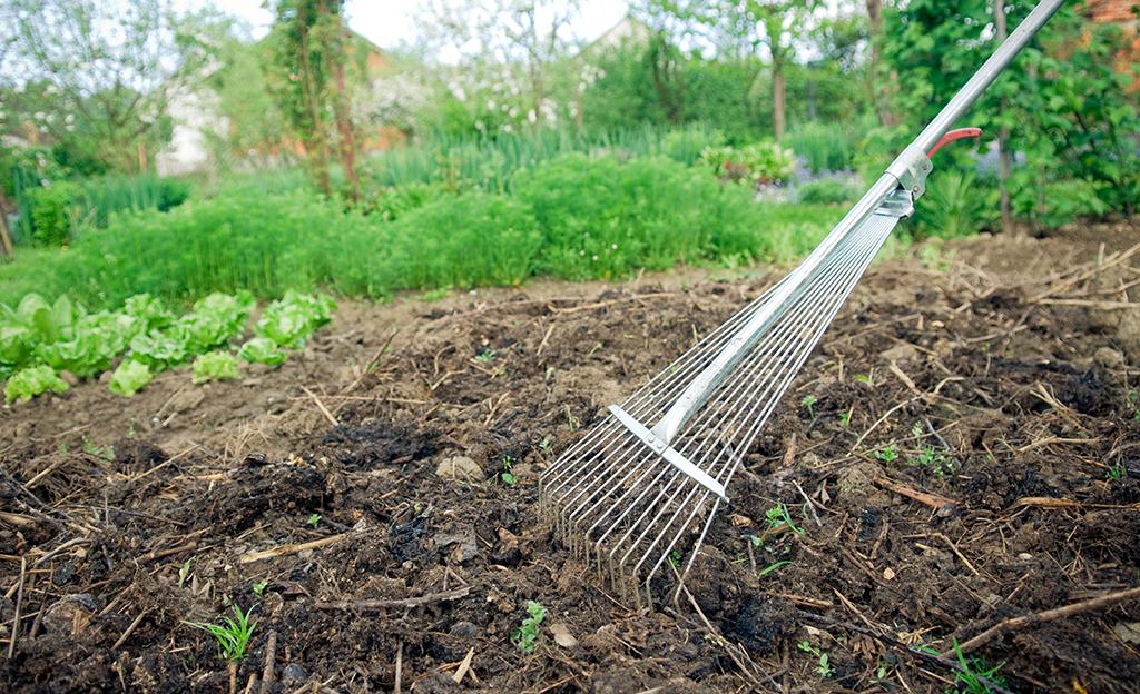 Bodenverbesserung | Garten & Balkon | Selbst.de Bodenverbesserung Garten Mittel Tipps