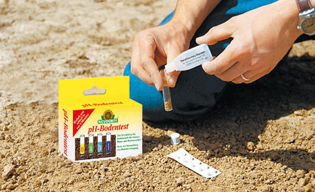 Bodenprobe: pH-Wert