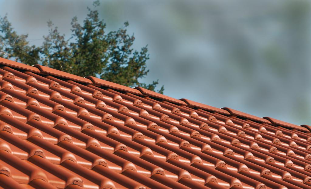 Dach selber bauen | selbst.de