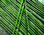 Tischdeko zauber asiens dekorieren - Tischdeko bambus ...