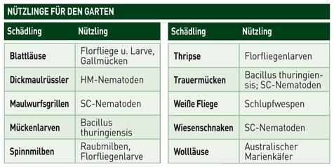 Biologischer pflanzenschutz garten balkon for Gelbe leimtafeln