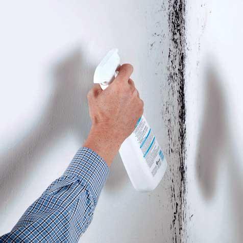 schimmel im wohnzimmer mietminderung: mietminderung: gründe und, Wohnzimmer