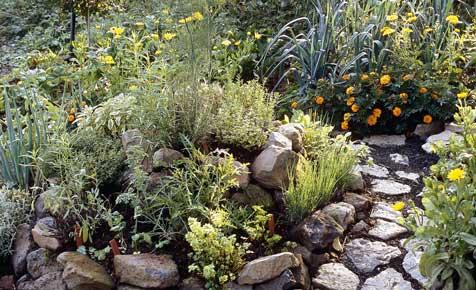 steingarten | steingarten | selbst.de, Gartenarbeit ideen