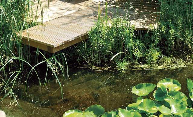 teich-steg bauen | stege | selbst.de, Garten und Bauen