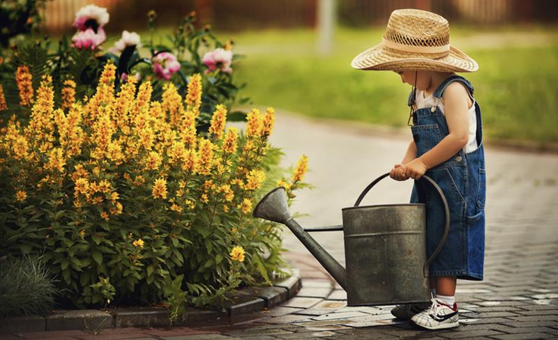 pflegeleichter garten | bewässerung | selbst.de, Best garten ideen