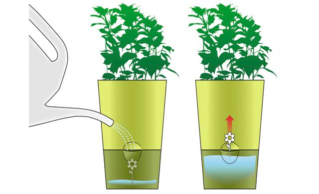 Favorit Kräutertopf mit Bewässerungssystem | selbst.de QW23