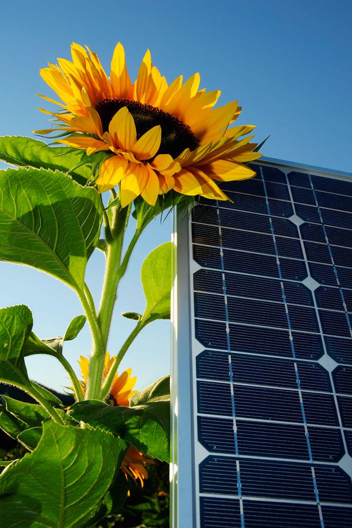Energiesparen: Solarstrom Photovoltaik