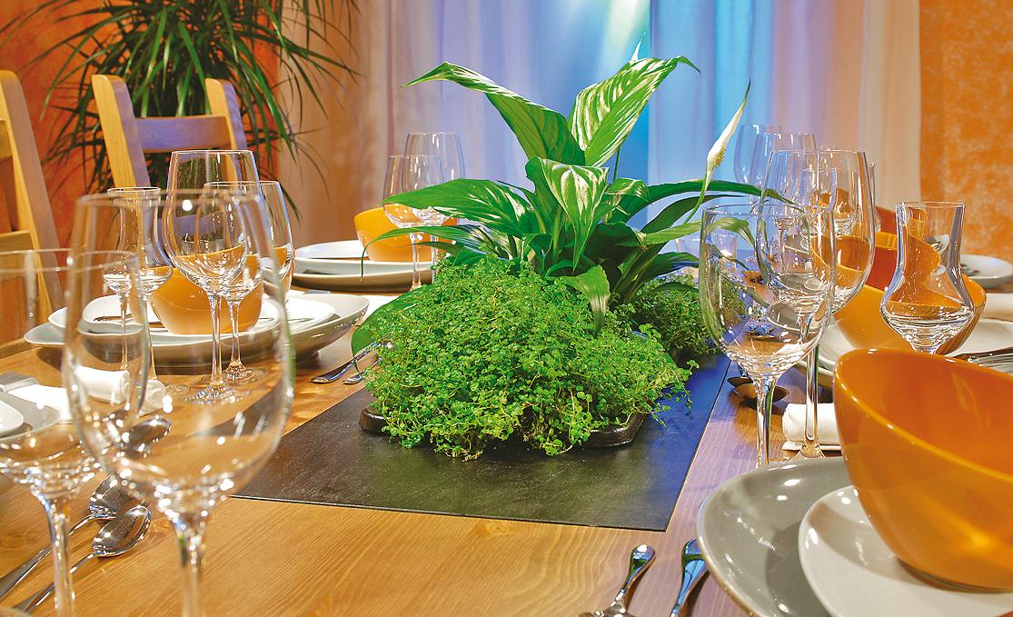 multifunktion: esstisch verschönern | tische & sitzmöbel | selbst.de, Garten und erstellen