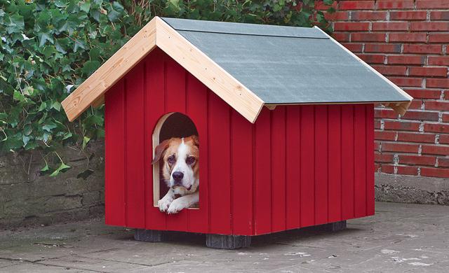 Hundehütte Selber Bauen Selbst De