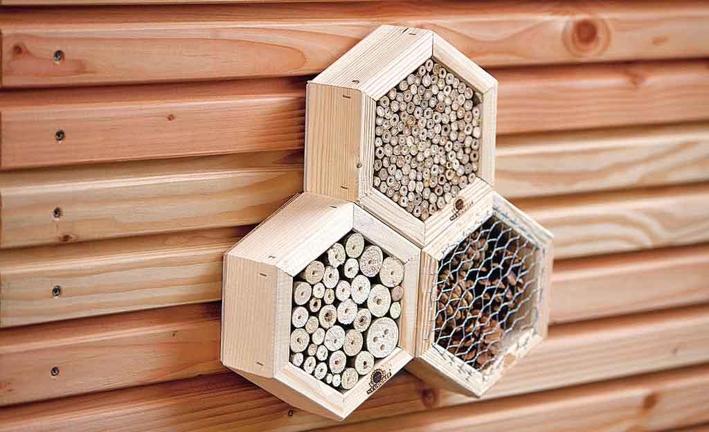 Insektenhotel kaufen