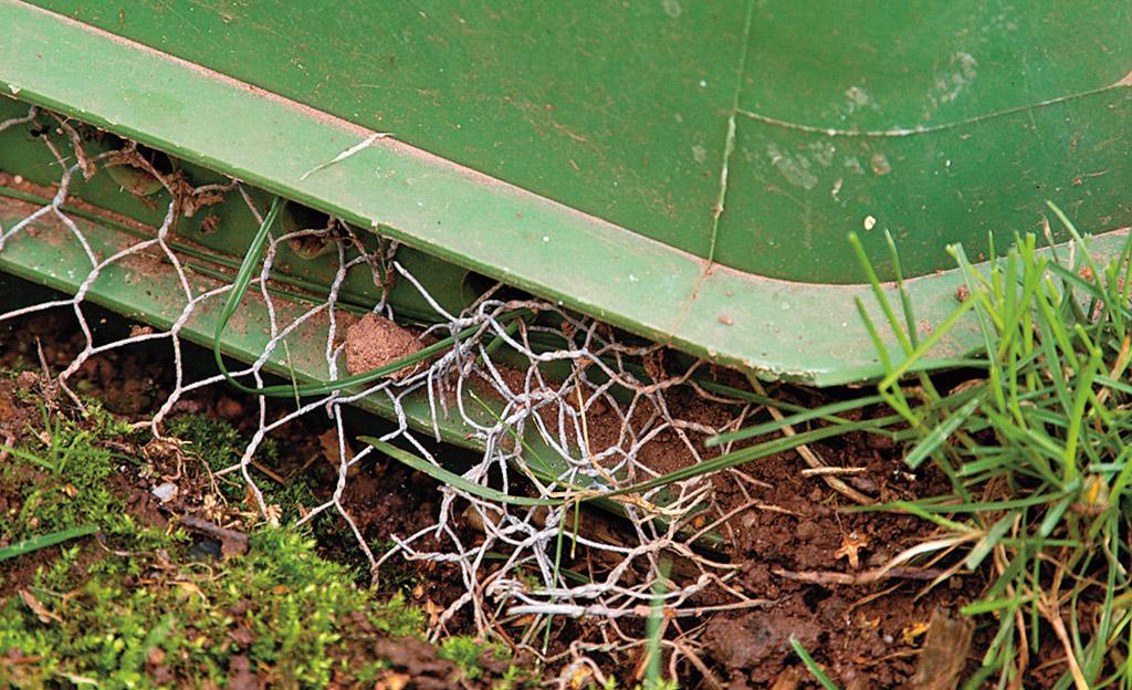 Komposter Küche | Kompost Was Darf Rein Selbst De