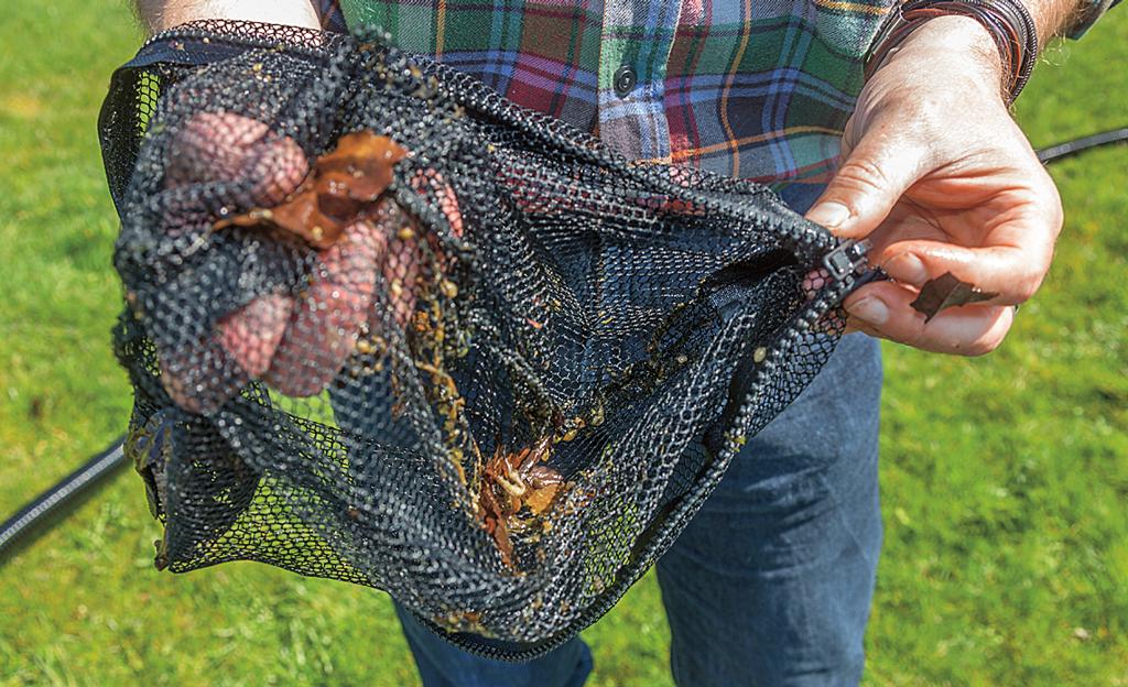 Teichsauger teichtechnik for Fischteich wasser reinigen