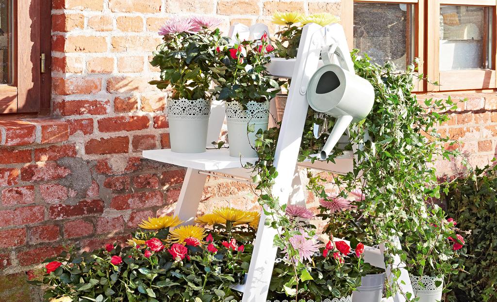 Blumenleiter bauen