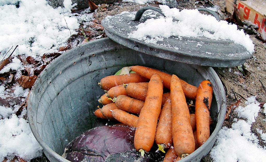 Winterquartiere für Gemüse
