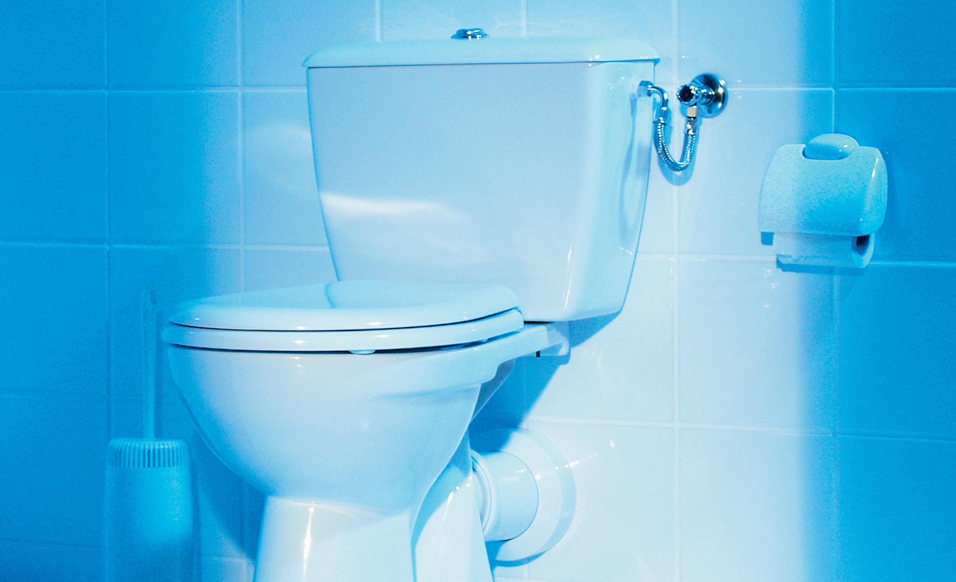 Klosett: Stand-WC montieren