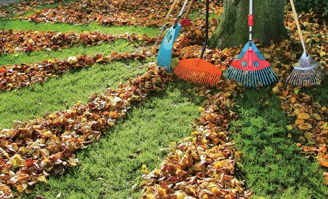 Laub von Rasenflächen entfernen