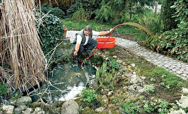 Teich sanieren