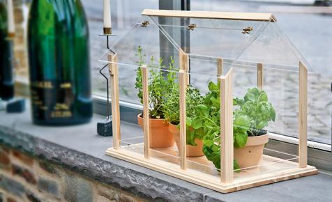 Mini-Treibhaus bauen