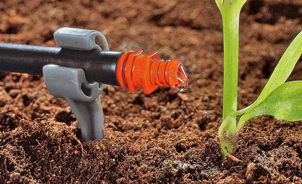 Tröpfchenbewässerung