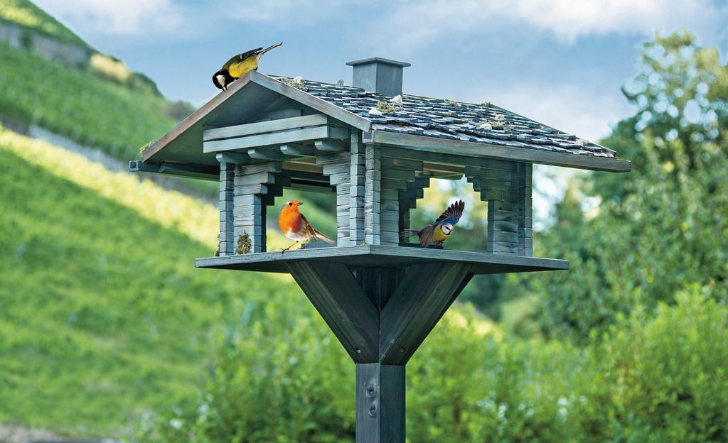 Vogelfutter-Blockhaus
