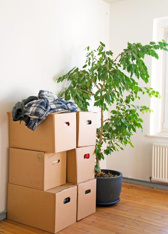 Umzugskartons und Verpackungsmaterial