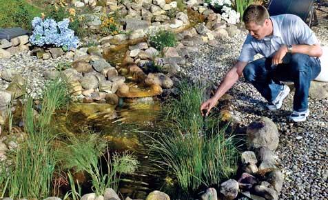 Teich: Anlage, Pflanzen und Pflege