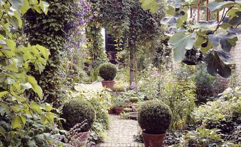 kleiner garten | planung & anlage | selbst.de, Garten und erstellen