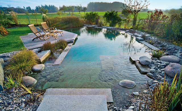Pool: Schwimmbecken im Garten