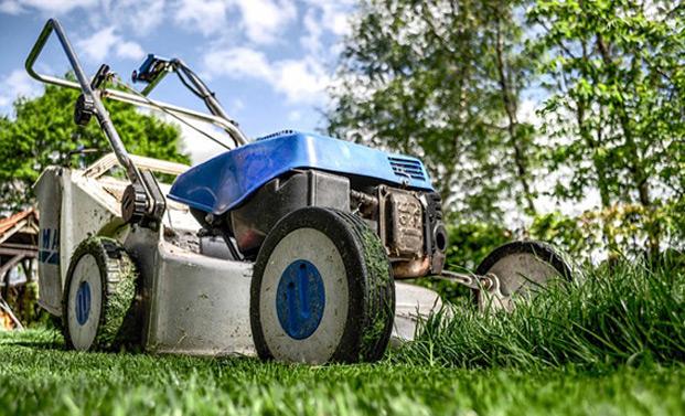 Rasenmäher Tipps beim Kauf