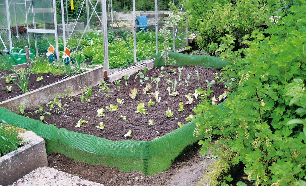 Schneckenzaun aufbauen