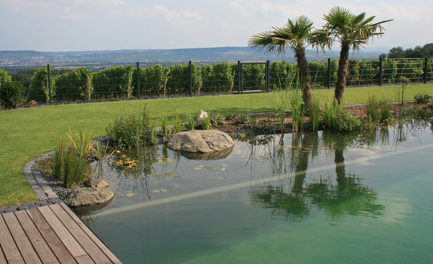 Bauanleitung schwimmteich selber bauen bauplan auf for Teichanlage selber bauen