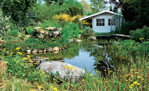 Teich anlegen 25 best ideas about teich anlegen on for Gartengestaltung teich