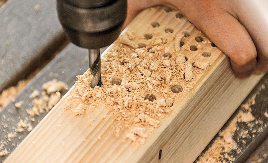 Holzbohrer Test