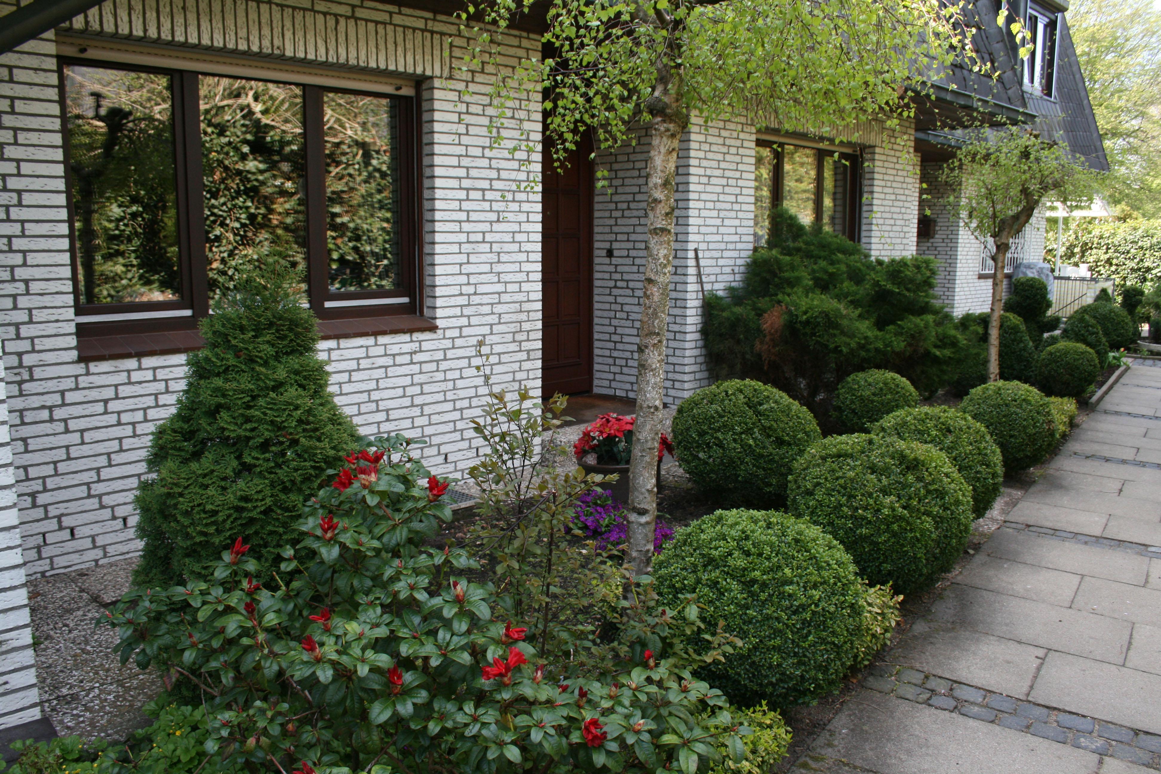 Alter Vorgarten - Vorher