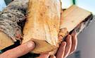 Brennholz sägen