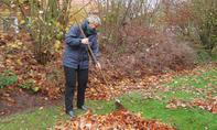 Herbst: Den Garten winterfest machen