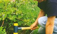 Edelstahl-Rasenkante einschlagen