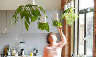 Pflanzgefäß: Hängender Blumentopf