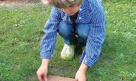 Grasflicken: Rasen ausbessern