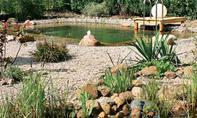 Schwimmteich mit Regenerationszone