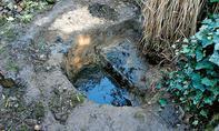 Teichgrube ausheben